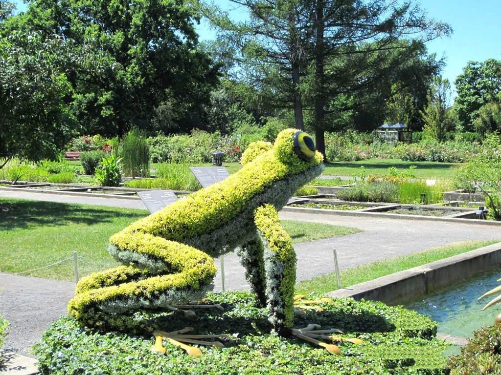 خلاقیت فضای سبز